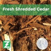 Fresh Shredded cedar