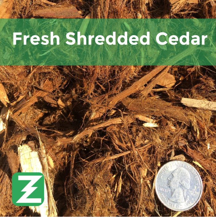 Fresh Shredded cedar