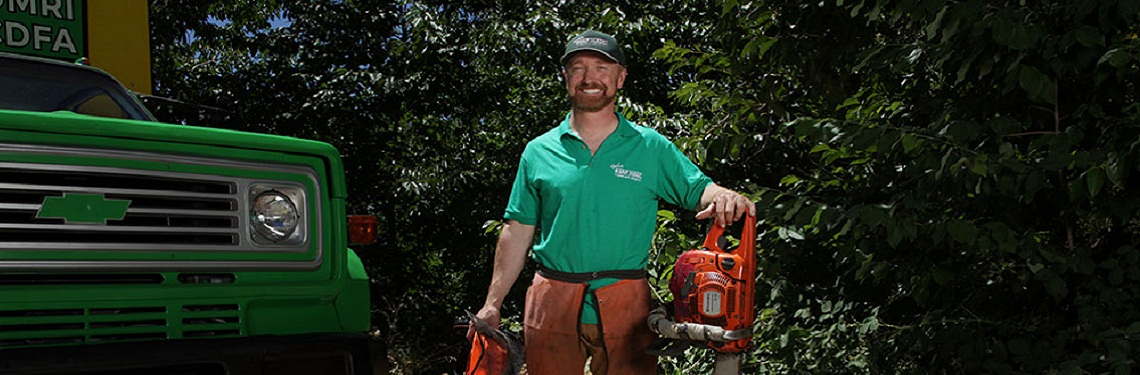 tree removal grass valley