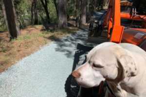 Driveway Repair with Zap Haul and Marley