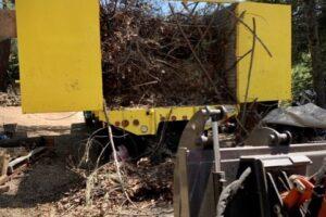 tree_work