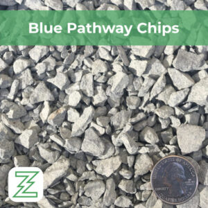 Blue Pathway Chips