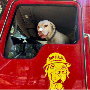 Marley in red truck
